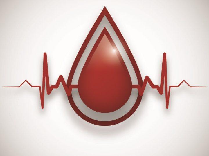 Vyhodnotenie letnej kvapky krvi 2021