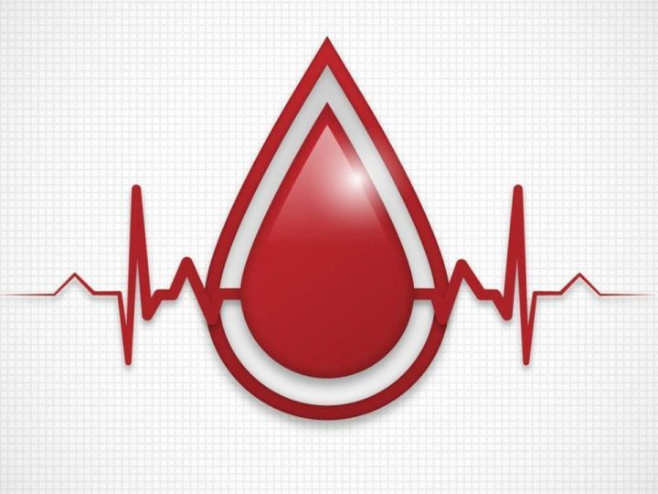 Letná kvapka krvi 2019